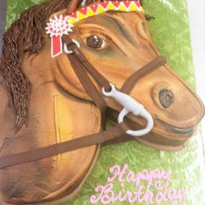 BD Equestrian